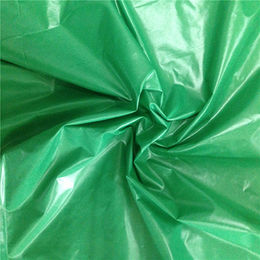 400T full dull nylon taffeta CIRE waterproof fabric from Suzhou Best Forest Import and Export Co. Ltd