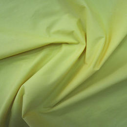 300T nylon taffeta waterproof fabric from Suzhou Best Forest Import and Export Co. Ltd
