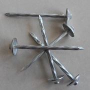 China Umbrella head roofing nail with electric galvanized, hot dipped galvanized,roofing nail with washer