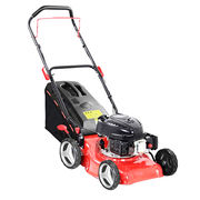 99cc Lawn Mower from China (mainland)