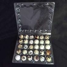 Quail egg packaging tray from China (mainland)