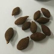 Natural Scaphium Scaphigerum Tea from China (mainland)