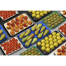 Fruit packing tray from China (mainland)
