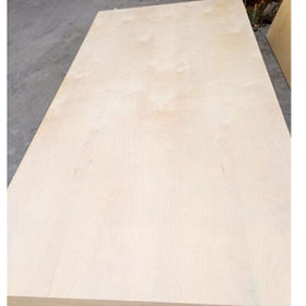 Commercial Plywood birch Face from China (mainland)