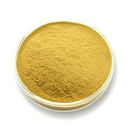 Natural Citrus Aurantium Extract Powder Plant Extract from Shanghai Yung Zip Pharmaceutical Trading Co., Ltd.