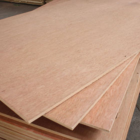 China 2.0-6mm Bintangor Commercial Plywood