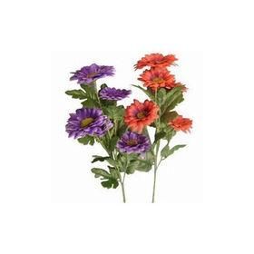 Flower from China (mainland)
