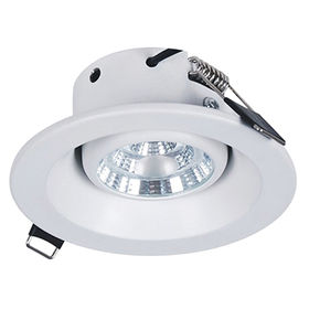 LED eye-ball down light from China (mainland)