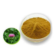 Natural Milk Thistle Extract Powder, CAS No. 84604-20-6 from Shanghai Yung Zip Pharmaceutical Trading Co., Ltd.
