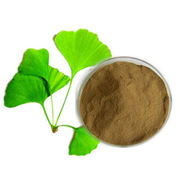 Natural Ginkgo Biloba Extract Powder, CAS No. 90045-36-6 from Shanghai Yung Zip Pharmaceutical Trading Co., Ltd.