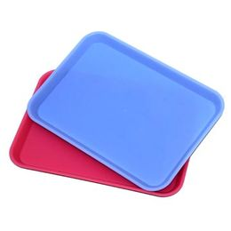 Plastic Tray from China (mainland)