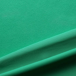China 100% Polyester Brushed Tricot Fabric