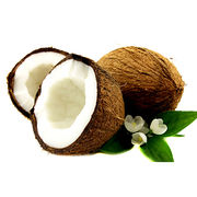China Cleaning Wash OEM 500mL Fractionated Coconut Oil, Bottom Price