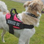 Hong Kong SAR Light Weight Service Dog Harness