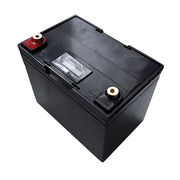 China LiFePO4 battery packs