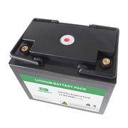 China LiFePo4 Battery Pack