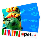 Promotional Prepaid Gift Cards for Supermarket and Clubs
