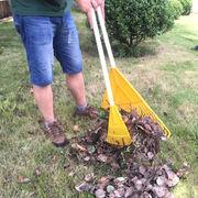 2 in 1 lawn rake grabber