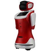 China Qihan sanbot cloud-brained singing dancing interactive entertainment robot