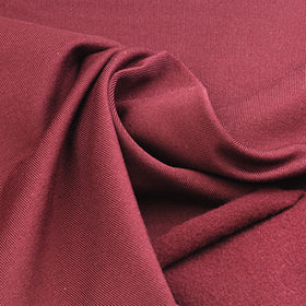 Jersey Fleece Fabric Made of Polymicro and Spandex from Lee Yaw Textile Co Ltd