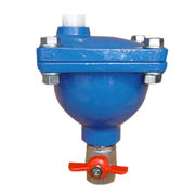 China Automatic air release valve