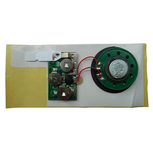 Greeting card pre-recorded sound module