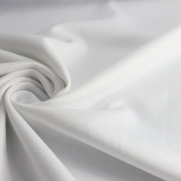 Temperature/Humidity Regulation Fabric, 77% Hydrophilic Poly + 23% Spandex Jersey from Lee Yaw Textile Co Ltd