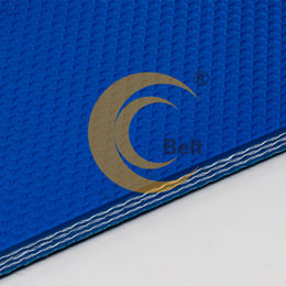 China PVC conveyor belt