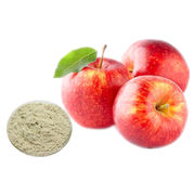Natural Apple Extract Powder from Shanghai Yung Zip Pharmaceutical Trading Co., Ltd.