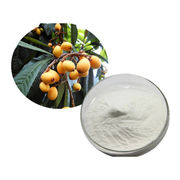 Natural Loquat Power Extract Fruit Extracts from Shanghai Yung Zip Pharmaceutical Trading Co., Ltd.