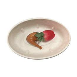 Biogases biodegradable medium oval bowl from Suzhou Ecos Tableware Co., Limited