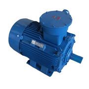 Image result for Explosion Proof Motor?