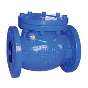 China Sand Casting Swing Check Valve, Blue Painted, Epoxy Coating, Ductile Iron Casting