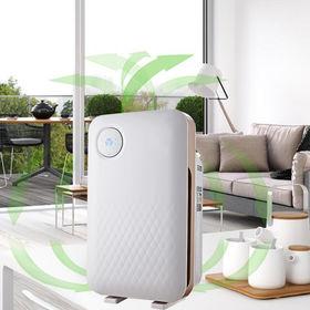 Air purifiers Exporter: Cixi Beilian Electrical Appliance Co  Ltd