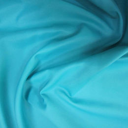 Jacquard nylon taffeta fabric from  Suzhou Best Forest Import and Export Co. Ltd