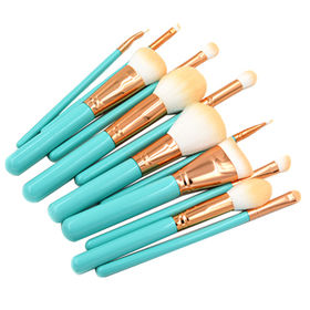 Makeup Brushes 12pcs from  Shenzhen Rejolly Cosmetic Tools Co., Ltd.
