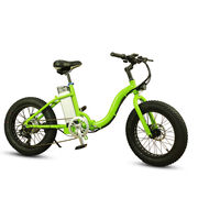 """China Most Popular 36V 350W 20"""" Folding City Fat Tire Electric Bikes for Women"""