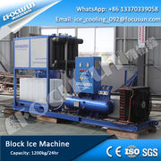 R22 and R404A 1200kg/Day Block Ice Machine, Shanghai