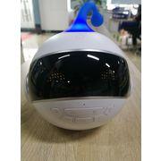 China Educational robot OEM/ODM