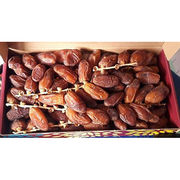 Dates from  Qingdao Starship International Industrial Co. Ltd