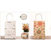 China Colored Printing Kraft Paper Bag