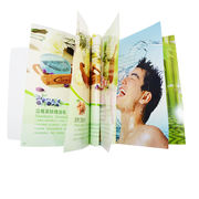 China Professional Book Printing/Catalogue Printing/Brochure Printing Made in China