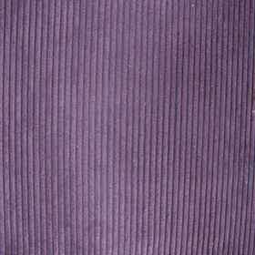 4.5W corduroy fabric from  Suzhou Best Forest Import and Export Co. Ltd