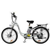 China OEM service provided China factory 26 inch best electric city bike