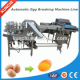 China China special Manufacturers