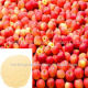 100% Natural Apple Extract Powder Apple 40% Polyp Manufacturers